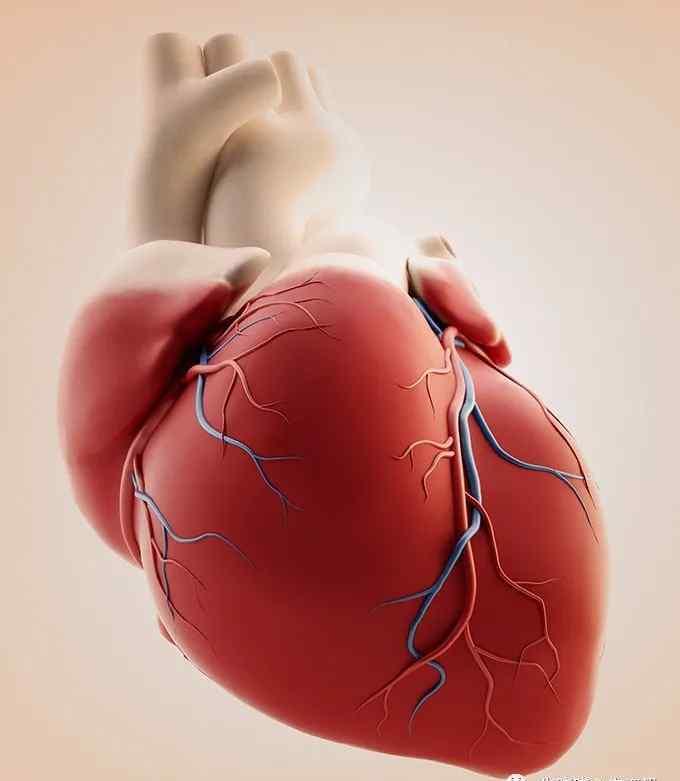 左胸痛是什么病的征兆 心健康丨左胸隐隐作痛是什么病?该做什么检查?
